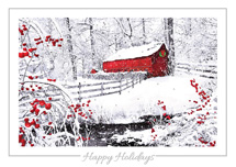 Winter Wonder Holiday Cards